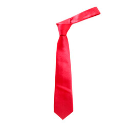 "Boy's 49"" Micro Woven Red Fashion Tie"