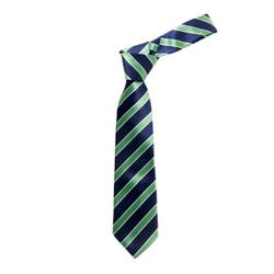 Boy's Green  Bold Stripes Micro Fiber Poly Woven Tie - MPWB3303-GN9