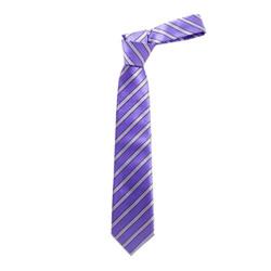 Boy's Purple Shadow Stripes  Micro Fiber Poly Woven Tie - MPWB3303-PR10