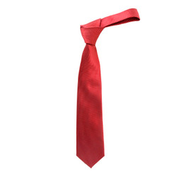 "Boy's 49"" Woven Red Fashion Tie"