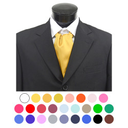 Solid Satin Poly Ascot With Hooks