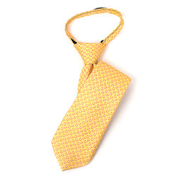 Boy's Yellow Small Paisley  Zipper Tie - MPWZ1448