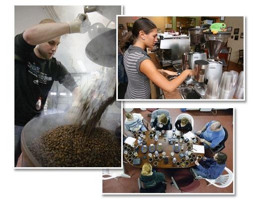 cafe-pics.jpg