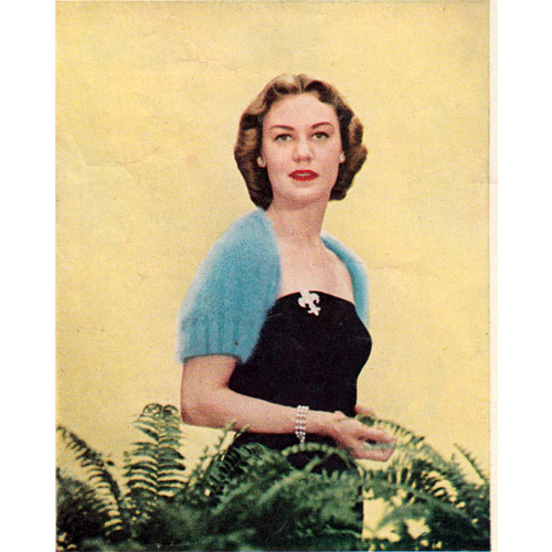 Vintage Knitted Shrug Pattern