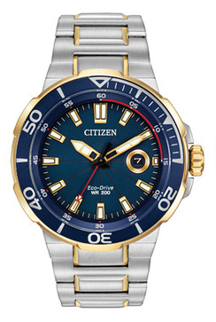 Citizen Endeavor Eco-Drive AW1424-54L