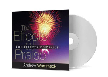 CD Album - The Effects Of Praise