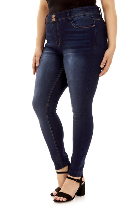 Plus Size Basic Curvy Skinny Jeans In Midnight