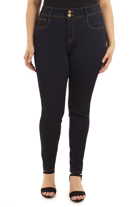 Plus Size Basic Curvy Skinny Jeans In Rinse