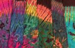 Purple Rainbow Indigo Rainbow Teal Rainbow Teal Sunset Twilight Aqua