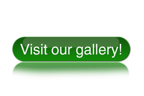 visit-our-gallery.png