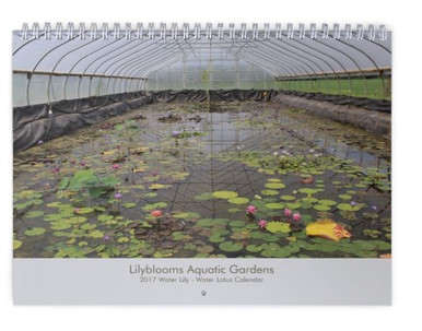 Lilyblooms 2017 Wall Calendar Cover