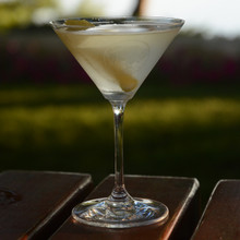 Riedel Martini- Etched