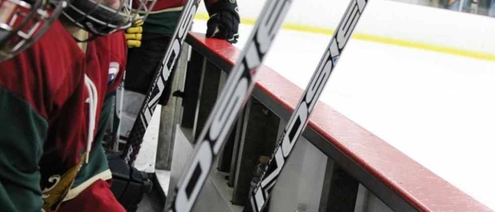 Bison Hockey Sticks