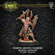 Master Ascetic Naaresh