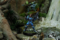 Lieutenant Stephen Rao, Bagh-Mari Unit