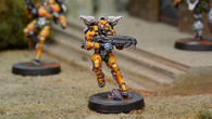 Tiger Soldier (Spitfire)