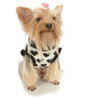 Black Luved Pup Sweater