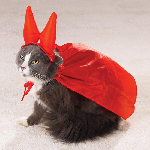 The Evil One Cat Costume