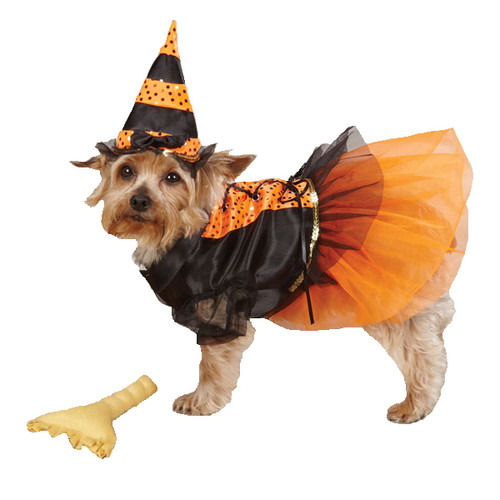 Party Witch Pet Costume
