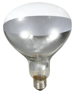 Little Giant 170031 250 Watt Clear Heat Lamp Bulb