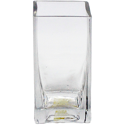 Viz Floral 2x2x4 rectangular glass vase