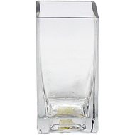 Viz Floral 2x2x4 rectangular glass vase