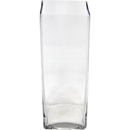 Viz Floral 5x5x10 rectangular glass vase
