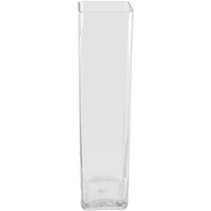 Viz Floral 5x5x24 rectangular glass vase