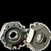 #12-24 External Tooth Keps Locknut, Zinc Cr+3 (100/Pkg.)