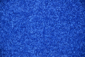Electric Blue Plush 8' x 10' Bound Carpet Area Rug