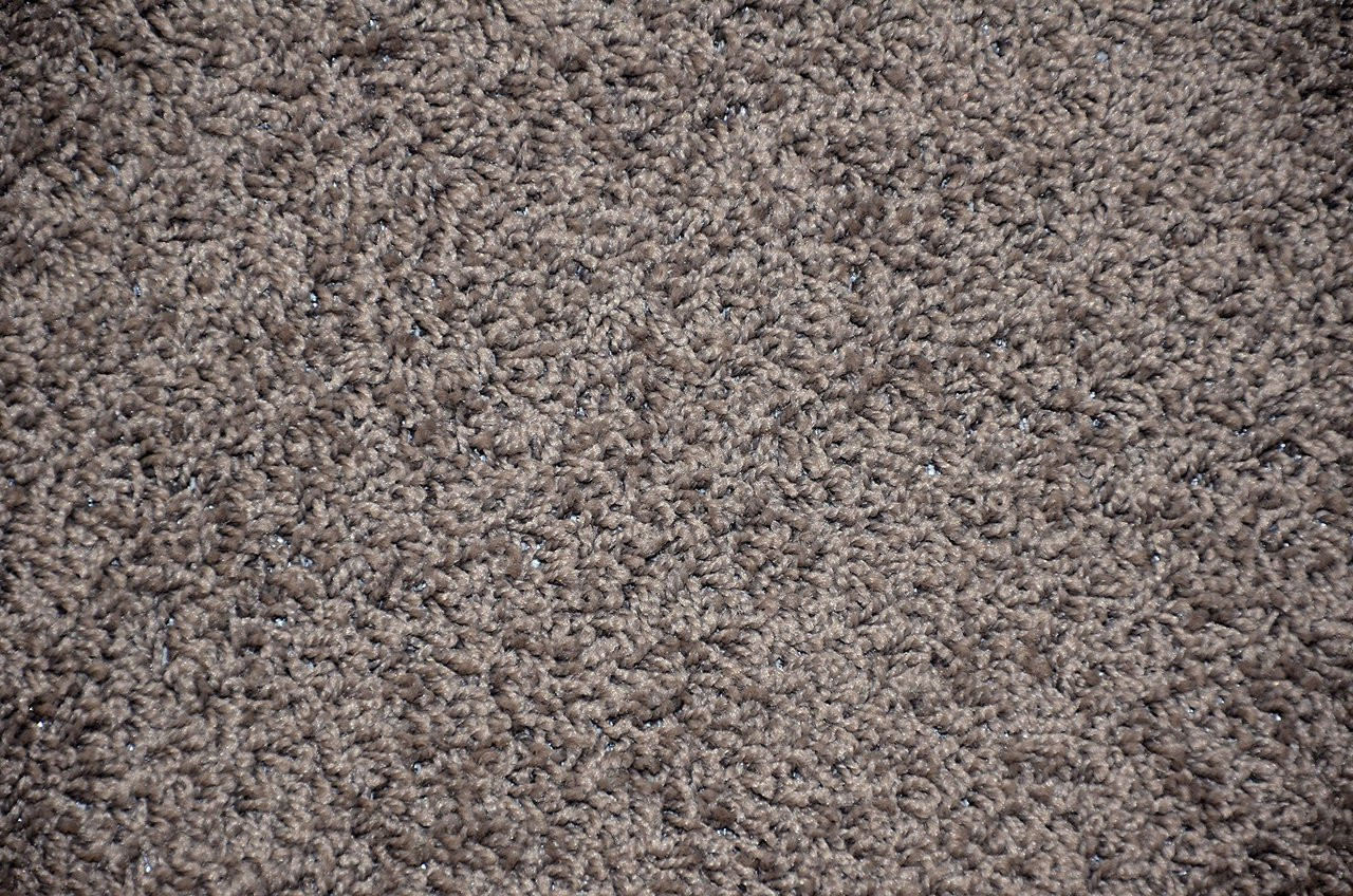 Dynasty 5 X 7 Gray Plush Serged Carpet Area Rug