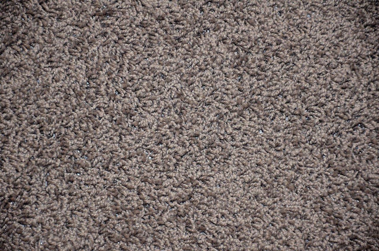 Dynasty 5 X 7 Gray Plush Serged Carpet Area Rug