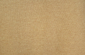 Dean Gold 5' x 7' Serged Carpet Area Accent Dorm Rug