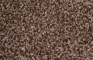 Quail Hollow Brown 70 oz. Plush 5' x 7' Serged Carpet Area Rug