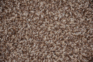 Safari Brown Plush 5' x 7' Serged Carpet Area Rug