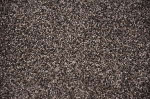 Smokey Hill Gray Plush 5' x 7' Serged Carpet Area Rug
