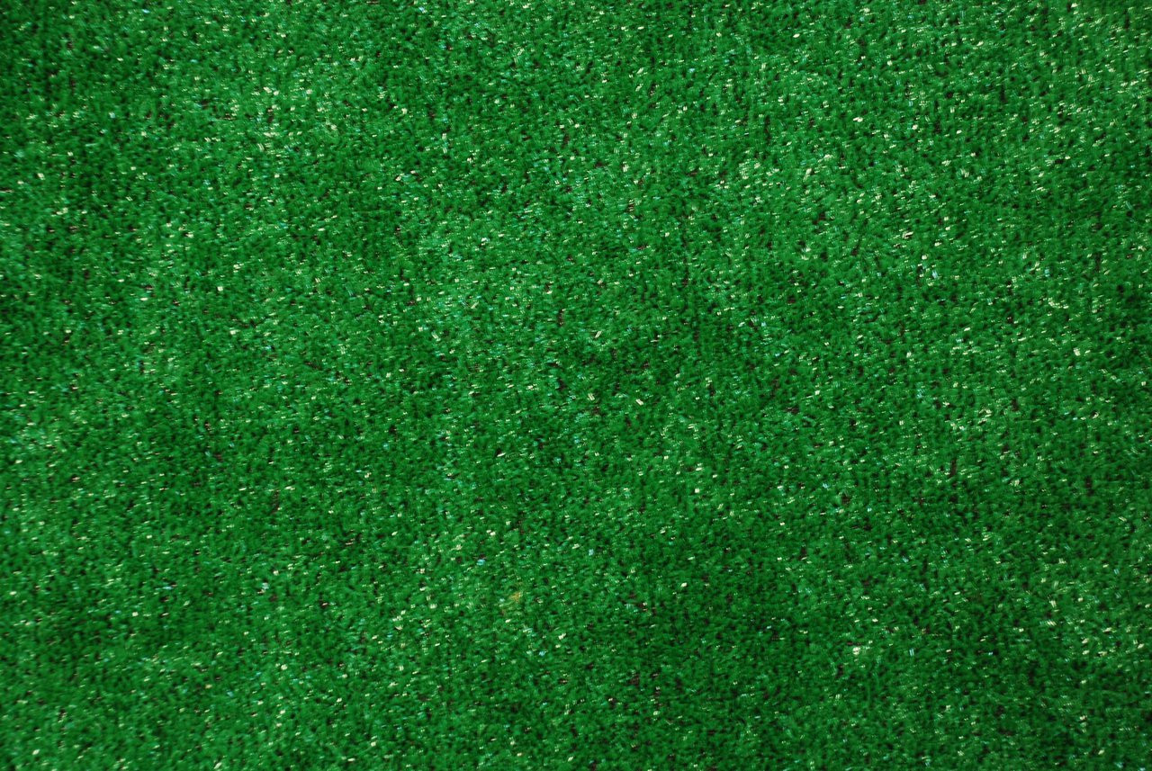 Dean Indoor Outdoor Artificial Grass Turf Area Rug 6x8