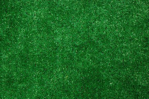 Delightful Dean Indoor/Outdoor Green Artificial Grass Turf Area Rug 6u0027 X 8u0027