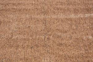 Dean Indoor/Outdoor Brown/Tan Artificial Grass Turf Area Rug 6'x8'