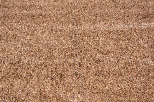 Dean Flooring Company Indoor/Outdoor Brown/Tan Artificial Grass Turf Area  Rug 6 U0027x 15u0027