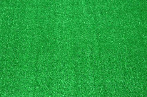Dean Indoor/Outdoor Carpet Green Artificial Grass Turf Area Rug 12u0027 ...