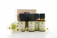 Set of 4 signature blends