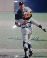 Mickey Lolich & Bill Freehan Autographed 1968 World Series 16x20 Photo