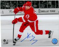 Pavel Datsyuk Autographed Detroit Red Wings 8x10 Photo #8 - Spotlight (horizontal)
