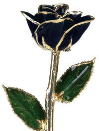 Black Rose Trimmed in 24kt Gold LG