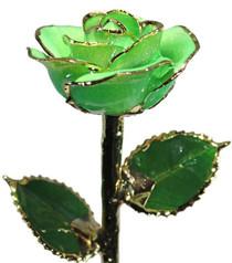 Light Green Sparkle Rose Trimmed in 24kt Gold LG