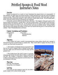 Petrified Sponges & Fossil Wood PDF