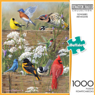 Hautman Brothers Songbird Menagerie 1000 Piece Jigsaw Puzzle Box