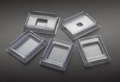 Disposable Base Molds, 30x24x5mm, 500 pcs/pack