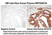 Klear Human HRP-Polymer with DAB Kit 110 ml